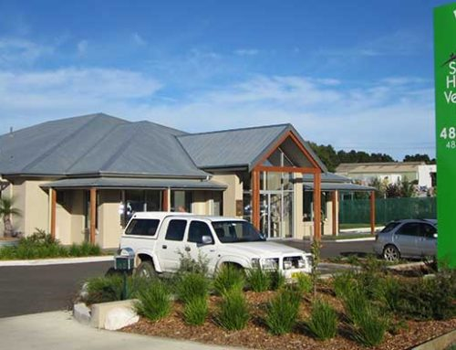 Southern Highlands Veterinary Clinic